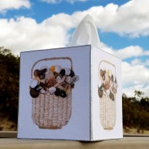 Basket of Shells – TB