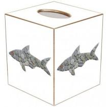 Shark – TB