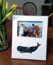 Whale Frame – F