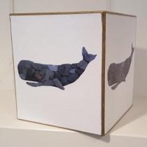 Whale – TB